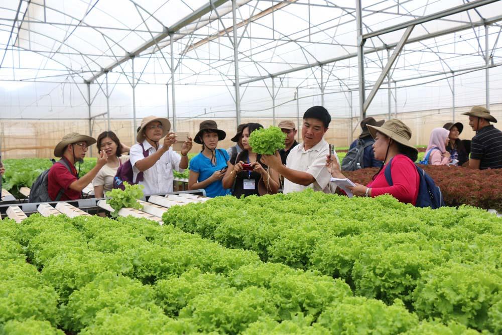 Phát triển nông nghiệp công nghệ cao cần gắn với tiêu thụ sản phẩm (23/5/2019)