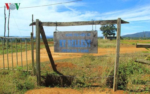 Nông nghiệp Tây Nguyên: Khi doanh nghiệp làm nông như làm xiếc (15/5/2019)