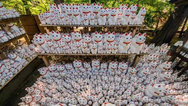 Thăm đền Gotokuji ở ngoại ô Tokyo – nơi khai sinh của những chú mèo vẫy tay may mắn tại Nhật Bản (15/6/2019)