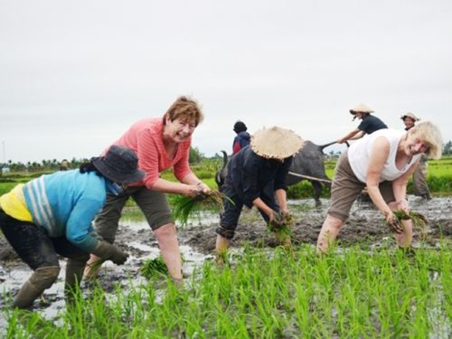 Kinh nghiệm phát triển du lịch nông nghiệp (8/6/2019)