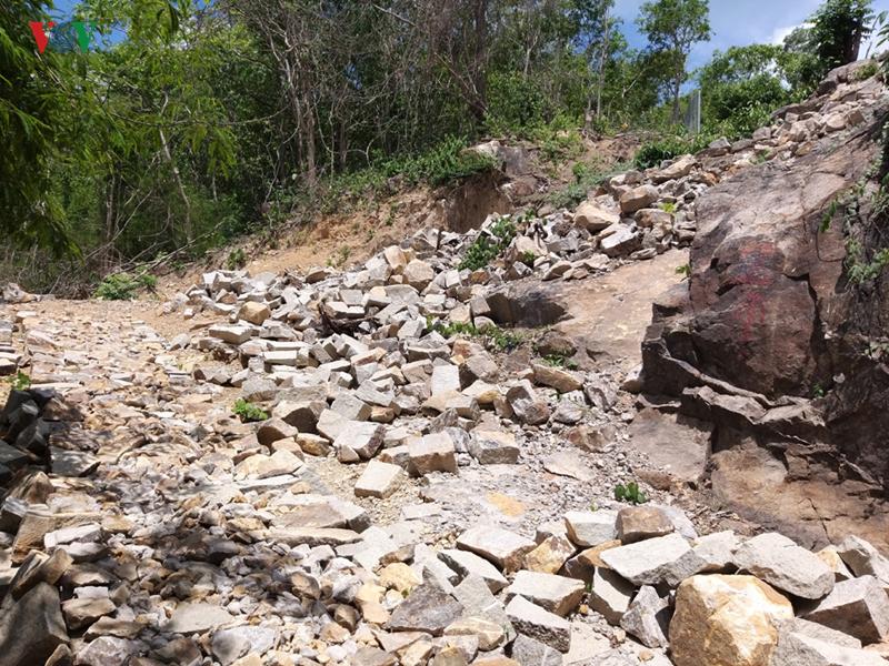 Bà Rịa – Vũng Tàu: Tái lấn chiếm đất rừng trên núi (11/6/2019)