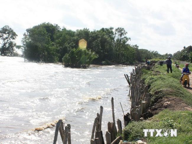 Đồng bằng sông Cửu Long làm gì để thích ứng với tác động của thượng nguồn và biến đổi khí hậu? (26/6/2019)