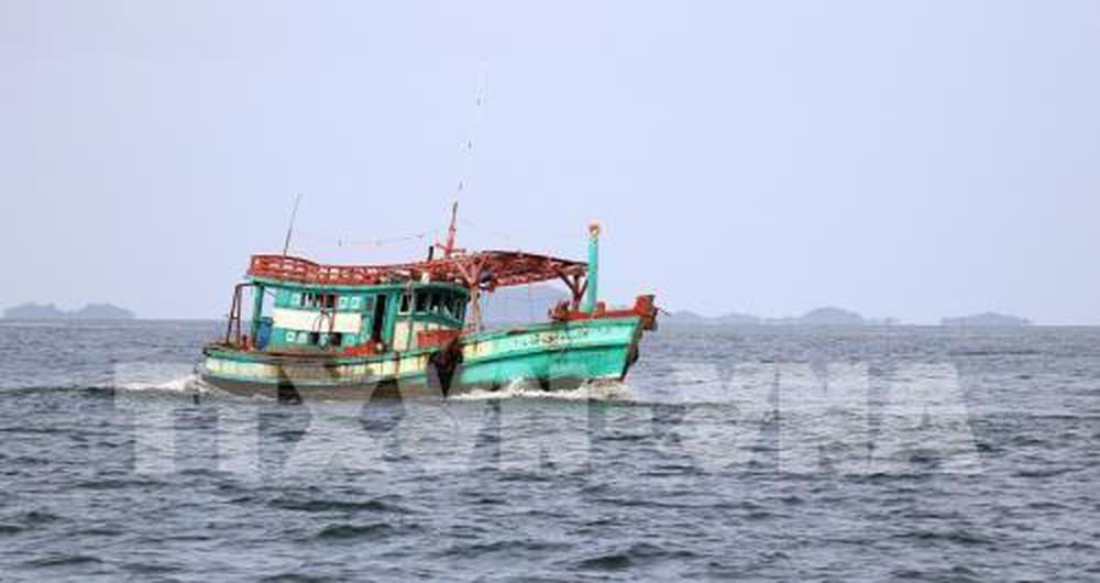 Các địa phương đẩy mạnh triển khai lắp đặt các thiết bị giám sát hành trình cho tầu cá (27/6/2019)