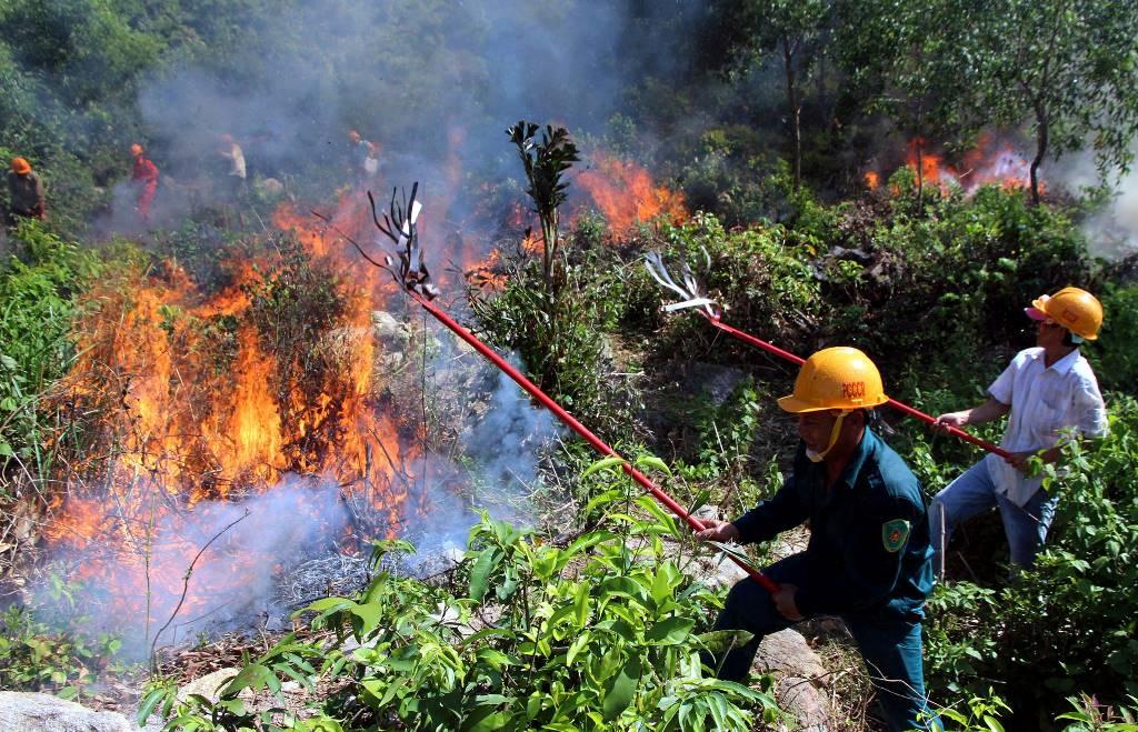 THỜI SỰ 21H30 ĐÊM 30/6/2019: Nhiều địa phương tại miền Trung đang tập trung chữa cháy rừng, trong khi đón chờ thời tiết sẽ dịu dần vào tối mai và bắt đầu có mưa từ mùng 2/7 tới.