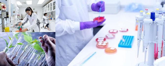 Phát triển thị trường công nghệ sinh học – không nhanh sẽ mất cơ hội (8/6/2019)