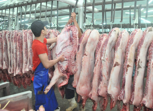 THỜI SỰ 6H SÁNG NGÀY 17/6/2019: Nhiều giải pháp cần thực hiện để doanh nghiệp tích cực tham gia cấp đông thịt lợn nhằm đảm bảo nguồn cung trong bối cảnh dịch diễn biến phức tạp.