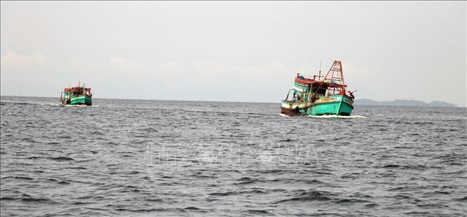 Kiên Giang quyết liệt ngăn chặn khai thác thủy sản bất hợp pháp (20/7/2019)