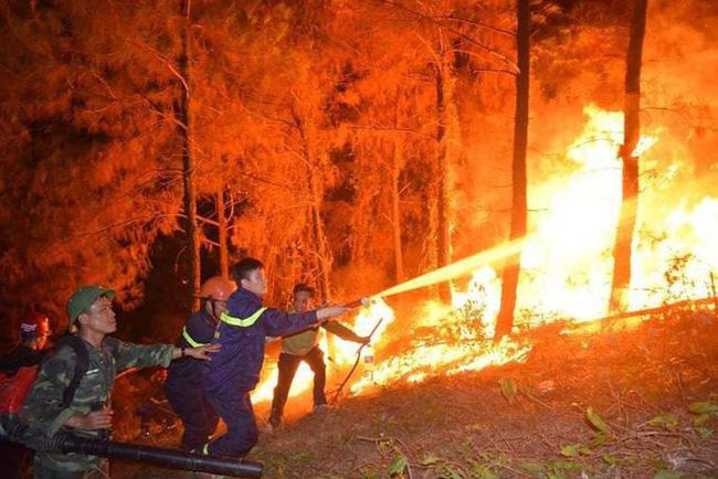 Nỗ lực ngăn chặn cháy rừng tại huyện Nghi Xuân, Hà Tĩnh (2/7/2019)