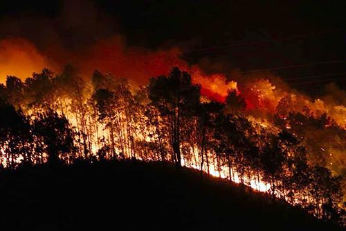 Làm thế nào để ngăn chặn các vụ cháy bùng phát trong tình hình thời tiết cực đoan như hiện nay? (9/7/2019)
