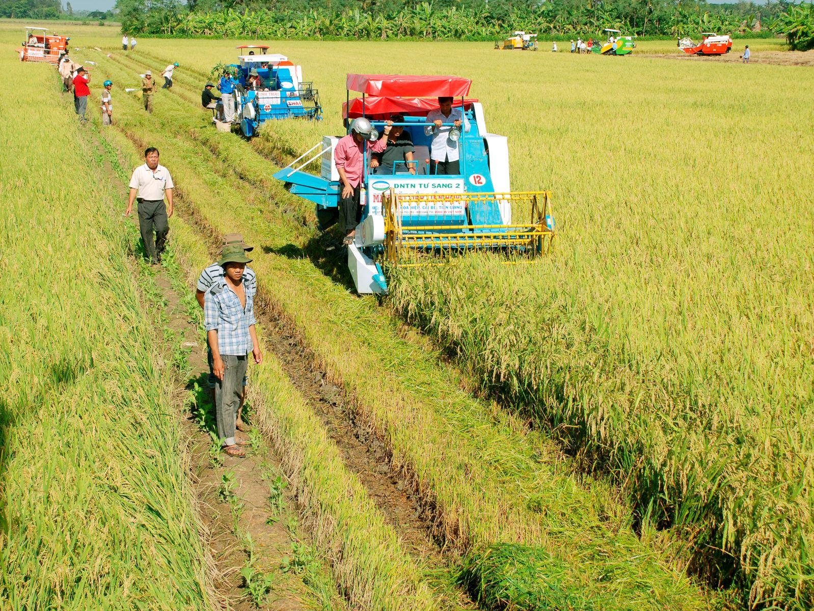 Áp dụng mô hình mới ứng dụng công nghệ trong sản xuất nông nghiệp thích ứng với biến đổi khí hậu (3/7/2019)