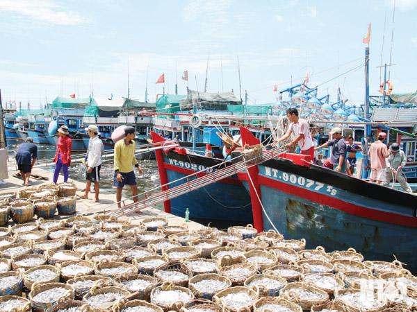 Ngành thủy sản nỗ lực vượt khó (8/7/2019)