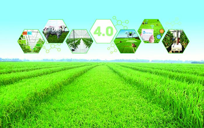 Ứng dụng công nghệ thông tin trong canh tác nông nghiệp (20/7/2019)