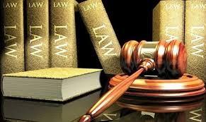Những giải pháp hạn chế tình trạng chậm trễ trong ban hành các văn bản pháp luật (24/7/2019)