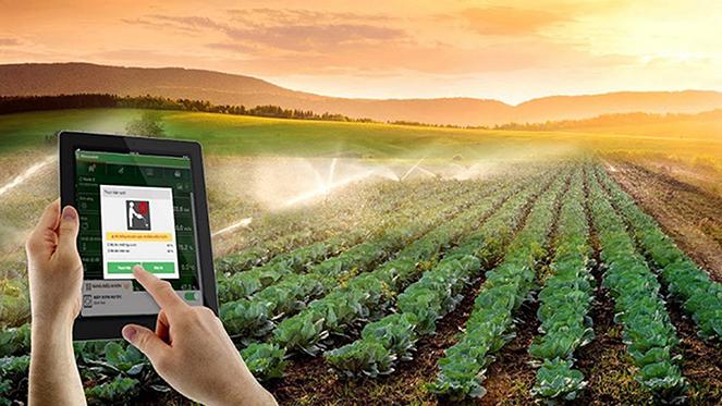 Gia tăng hàm lượng khoa học công nghệ vào sản xuất nông nghiệp (7/8/2019)