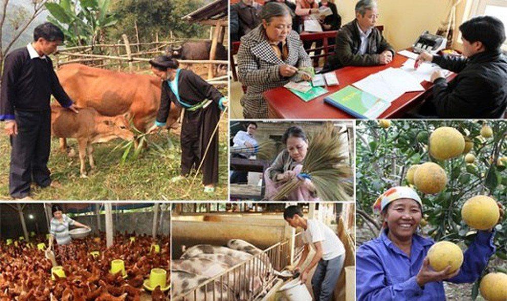 Huy động nguồn lực thực hiện chương trình mục tiêu quốc gia giảm nghèo bền vững (15/8/2019)