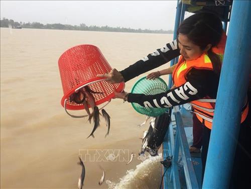 Giải pháp bảo vệ nguồn lợi thủy sản hạn chế hành vi khai thác bất hợp pháp (26/8/2019)