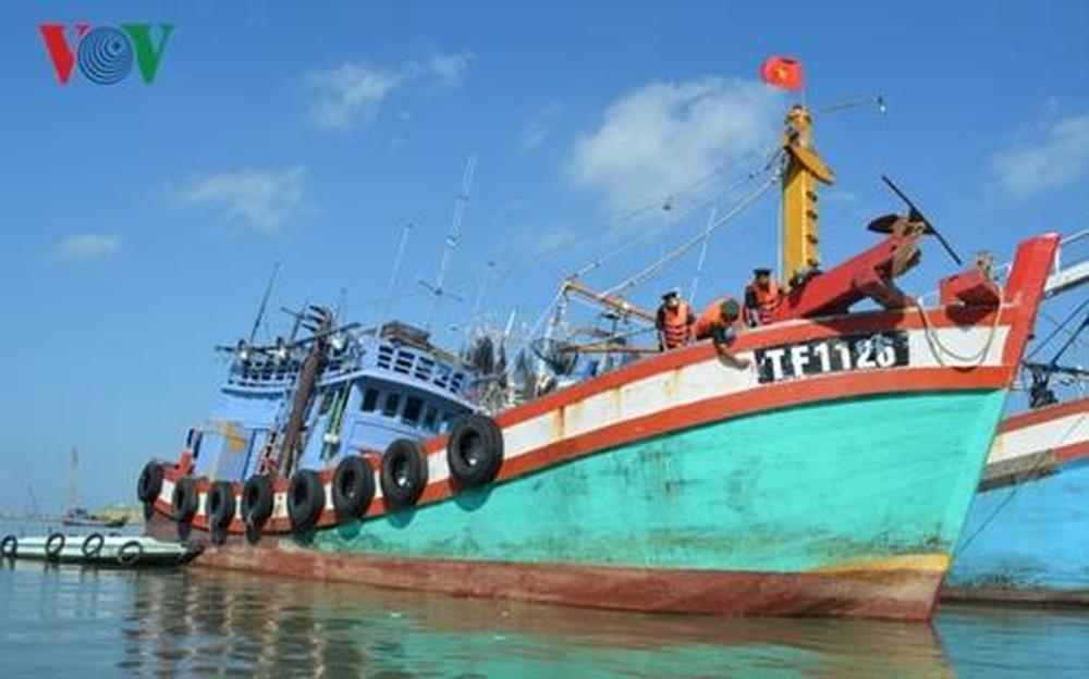 Giám sát tàu cá - Công cụ hữu hiệu chống đánh bắt cá bất hợp pháp (29/8/2019)