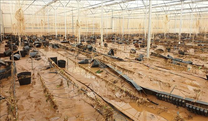 Lâm Đồng khắc phục hậu quả do mưa lũ bất thường (14/8/2019)
