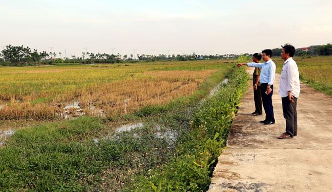 Vĩnh Phúc: Khó khăn giải quyết đất dịch vụ cho người dân (28/8/2019)