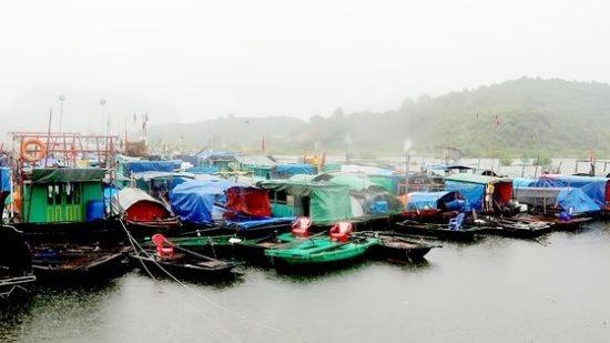 THỜI SỰ 6H SÁNG 3/8/2019: Bão số 3 suy yếu thành áp thấp nhiệt đới. Cảnh báo nguy cơ sạt trượt do mưa lớn.