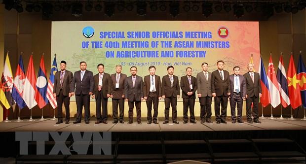 Hội nghị quan chức cấp cao Nông Lâm nghiệp ASEAN (7/8/2019)