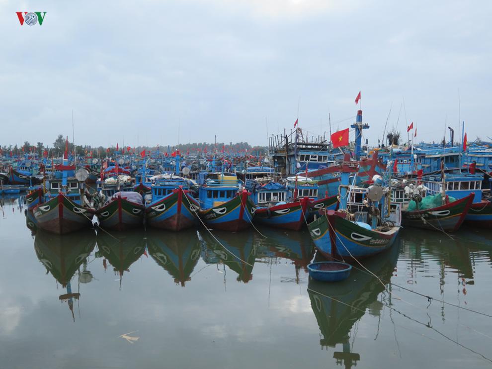 Quảng Ngãi chấm dứt tình trạng đánh bắt hải sản bất hợp pháp (24/8/2019)
