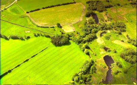 Đan Mạch đầu tư tìm giải pháp cho nông nghiệp