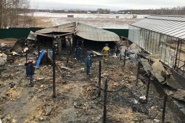 Ít nhất 8 người đã thiệt mạng trong vụ cháy xảy ra tại khu tổ hợp trồng trọt ở Moscow - Nga, trong đó có cả người Việt (8/1/2020)
