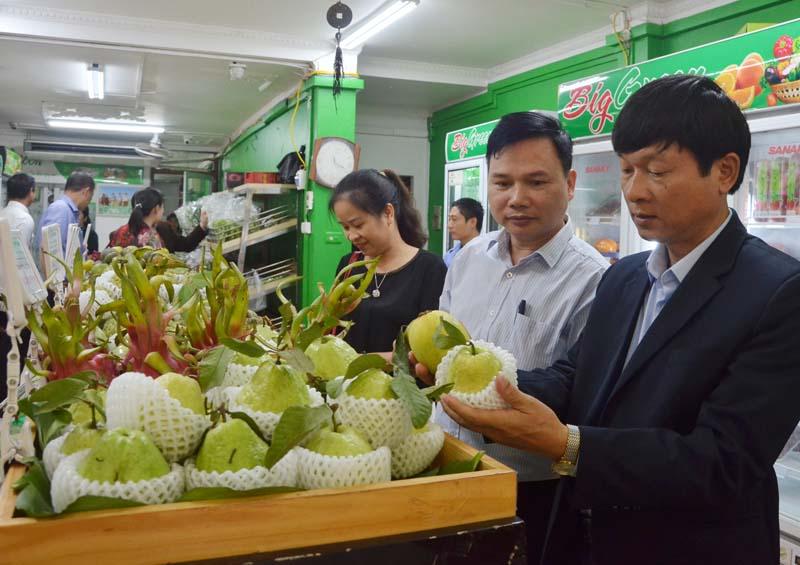 Phát triển nhãn hiệu tập thể cho sản phẩm nông nghiệp đặc trưng (21/1/2020)