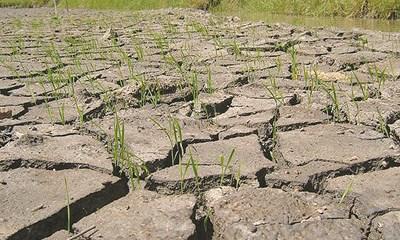 Biến đổi khí hậu đã vượt xa so với dự báo (15/1/2020)
