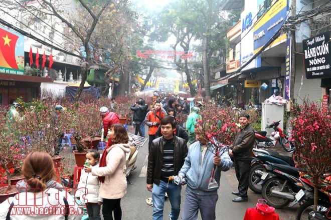 Nhộn nhịp chợ hoa Hàng Lược mỗi dịp Tết đến Xuân về (13/1/2020)