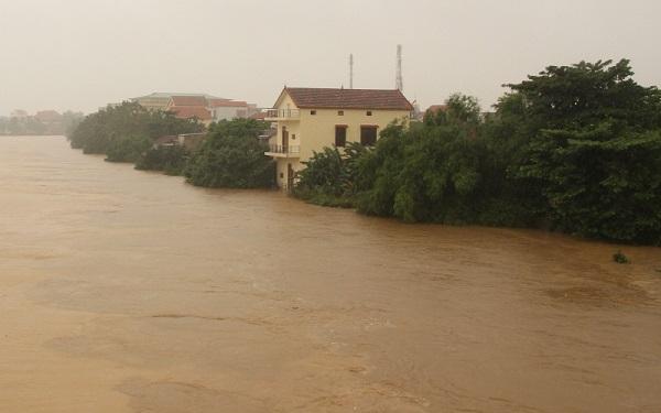 Những giải pháp hay ứng phó với lũ lụt (17/10/2020)