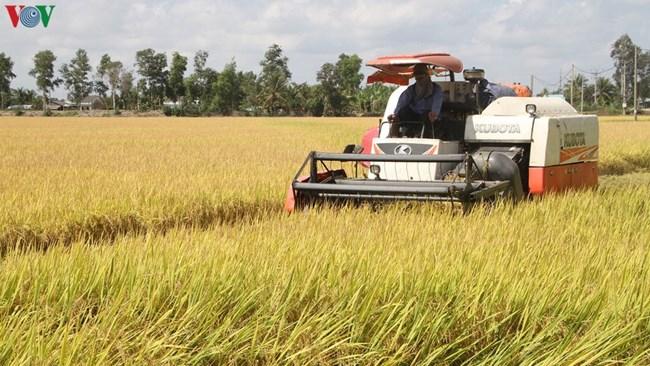 Nông nghiệp tăng trưởng vượt bậc nhờ thắng lợi kép (29/12/2020)