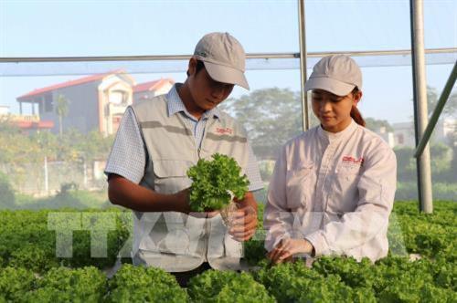 Bắc Giang ứng dụng công nghệ số trong sản xuất nông nghiệp (18/2/2020)