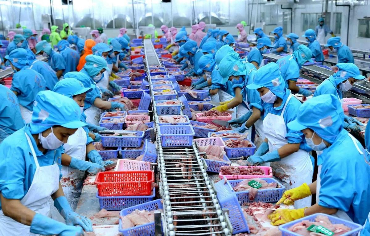 Hiệp định Thương mại tự do giữa Việt Nam và Liên minh châu Âu (EVFTA): Đòn bẩy cho tăng trưởng kinh tế Việt Nam (14/2/2020)
