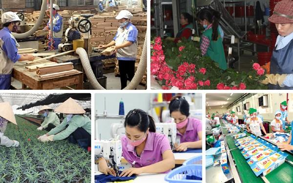 Cần có chính sách tạo động lực cho khối doanh nghiệp nhỏ và vừa phát triển (10/2/2020)