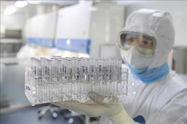 Vaccine phòng Covid-19 đã đạt thành công bước đầu trong quá trình thử nghiệm (24/2/2020)