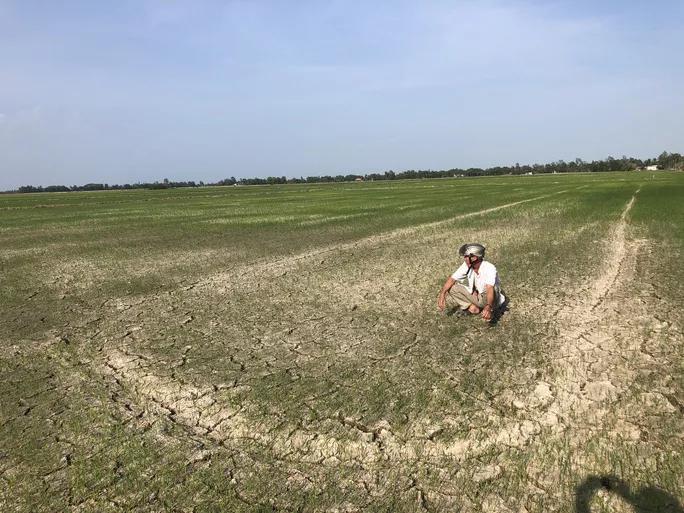 THỜI SỰ 12H TRƯA 7/2/2020: Đồng bằng sông Cửu Long đối mặt với tình trạng hạn mặn gắt hơn trung bình nhiều năm (7/2/2020)