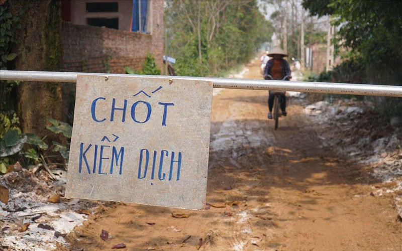 Hà Nội: Không để dịch gia cầm ở xã Phú Nghĩa, Chương Mỹ, lây lan diện rộng (19/2/2020)