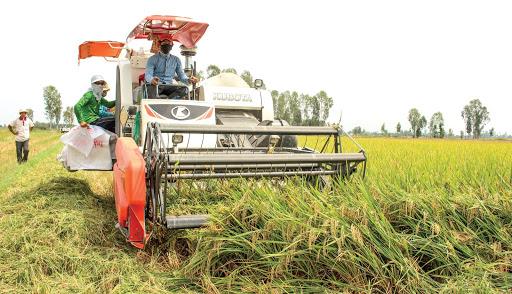 Cần gỡ nút thắt cơ giới hóa, thay đổi tư duy làm nông nghiệp (13/3/2020)