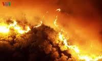 Thanh Hóa sẽ có camera chuyên dụng theo dõi cháy rừng (24/3/2020)
