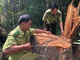 Đắk Lắk đưa công an chính quy về cơ sở, giảm phạm pháp hình sự (23/3/2020)