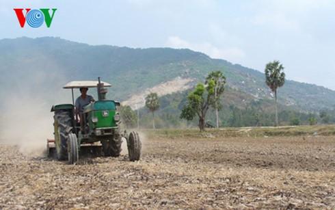 Đồng bằng sông Cửu Long: Giải pháp ứng phó hạn mặn, bảo vệ cây trồng (17/3/2020)