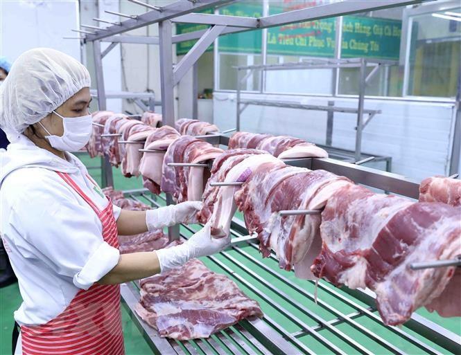 THỜI SỰ 18H CHIỀU 17/3/2020: Bộ Nông nghiệp và Phát triển nông thôn đề nghị doanh nghiệp giảm giá thịt lợn hơi xuống 70.000 đồng/kg.