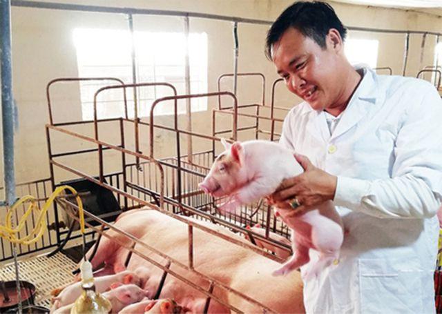 Triển khai Luật chăn nuôi và những điểm nghẽn cần khắc phục (6/3/2020)
