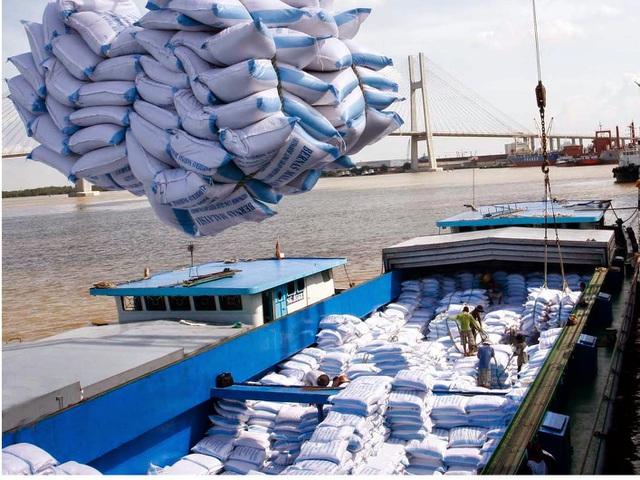 THỜI SỰ 6H SÁNG 4/4/2020: Thủ tướng yêu cầu xem xét kỹ việc xuất khẩu gạo thời điểm này.