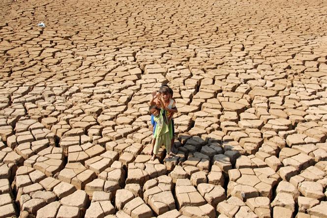 Miền Trung: Hạn hán và nắng nóng ảnh hưởng lớn đến sản xuất nông nghiệp (23/5/2020)