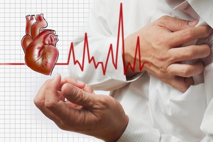 Tác dụng của đông trùng hạ thảo đối với người bị bệnh tim mạch và huyết áp (21/5/2020)