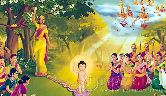 Màu nắng vô ưu đón chào đức Phật đản sinh (1/5/2020)