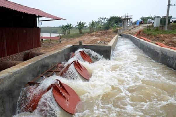 Bắc Ninh, Bắc Giang: vi phạm công trình thủy lợi trước mùa mưa bão diễn ra nghiêm trọng (11/6/2020)